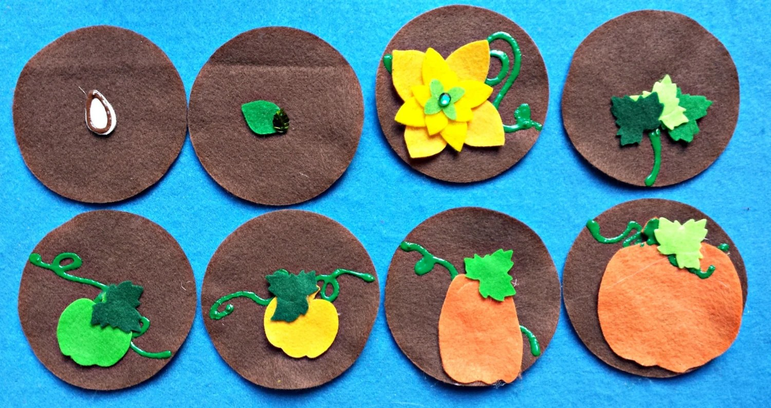 Felt Board Story Set Pumpkins Plant Life Cycle Growing And