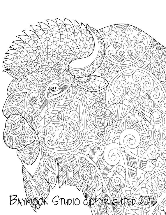 bison coloring page buffalo art printablebaymoonstudio