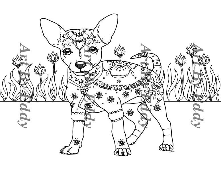 art of chihuahua single coloring page