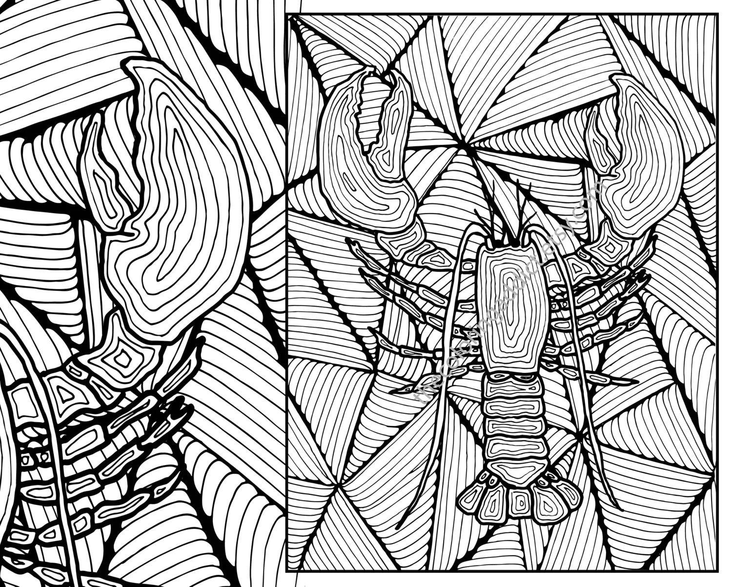 Lobster Adult Coloring Page Adult Coloring Sheet Colouring