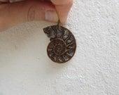 Ammonite pendant, fossil ...