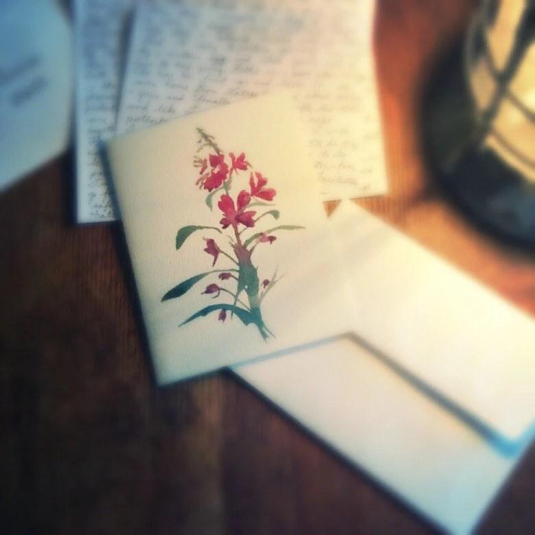 Fireweed, 6 Blank Greetin...