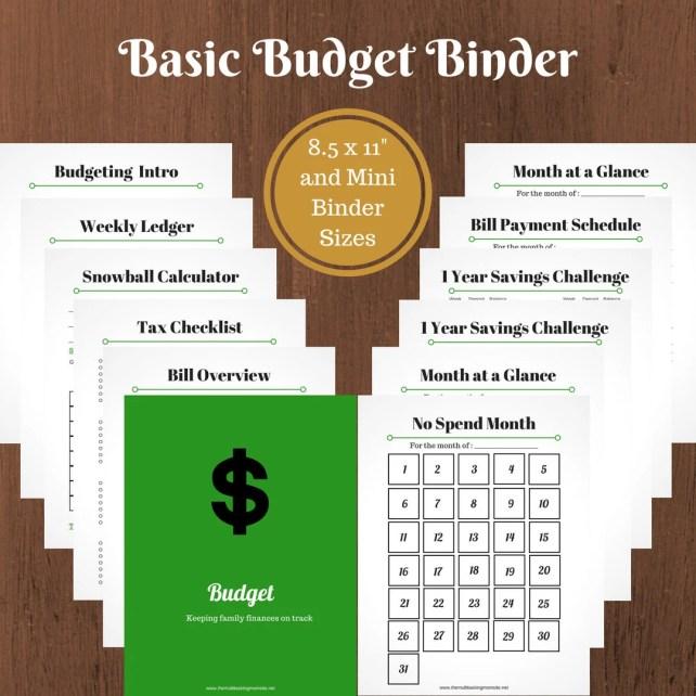 Basic Budget Printable...