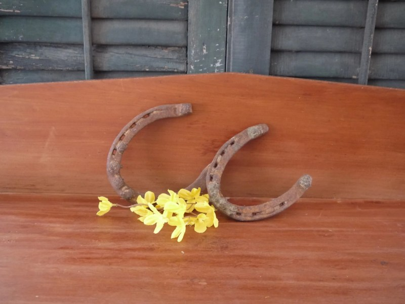 Two Iron Horseshoes. Many Uses, Paperweights, Decoration,          Modify Them To Use As Bookends, Hang Them Up For Good Luck