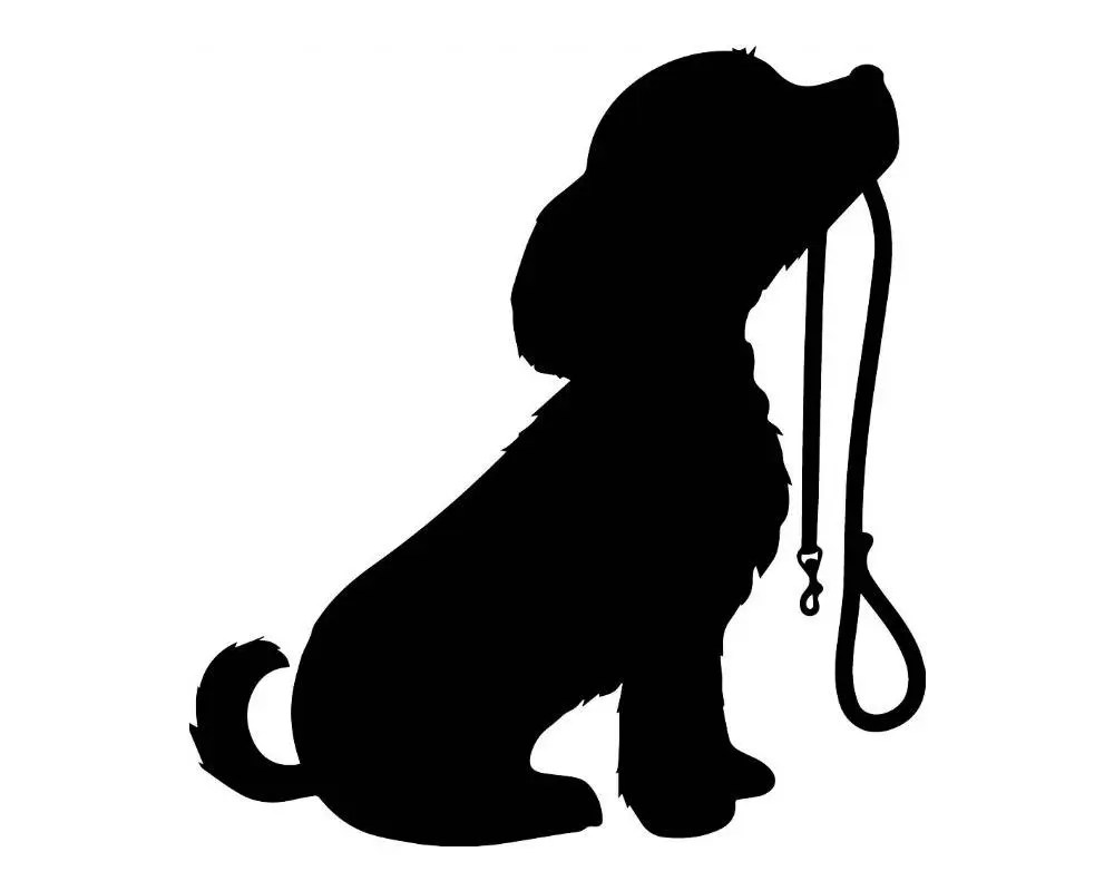 Dog Pet Leash Animal Puppy Canine Adorable Doggy Love Black