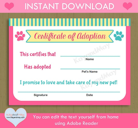 Printable Blank Baby Birth Certificates Templates
