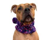 Winter Scarf for Dogs, Kn...
