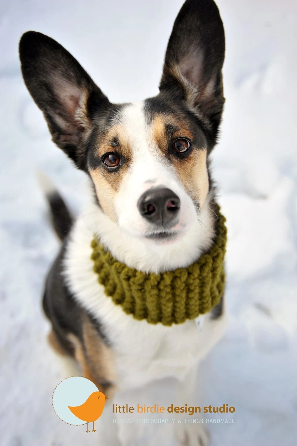 Hunter Green Doggie Neck Warmer - Med