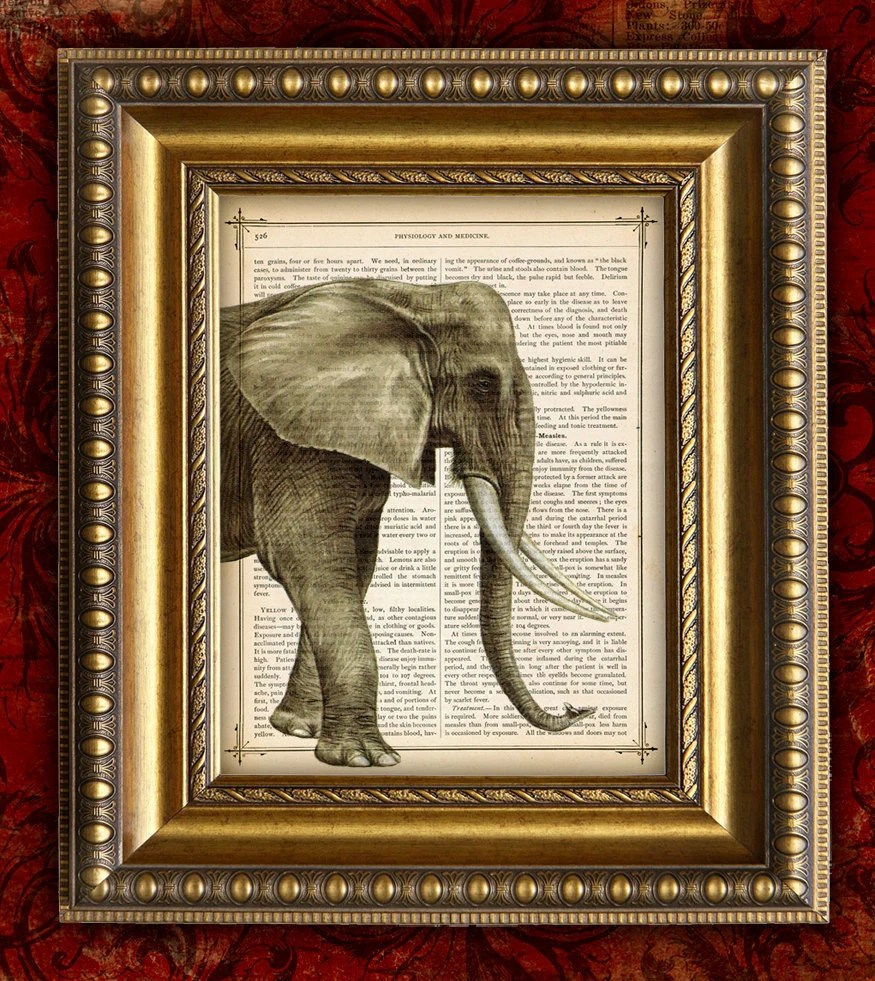 ELEPHANT Color Vintage Art Print 8x10 on Antique 1881 Book Page or Dictionary Page