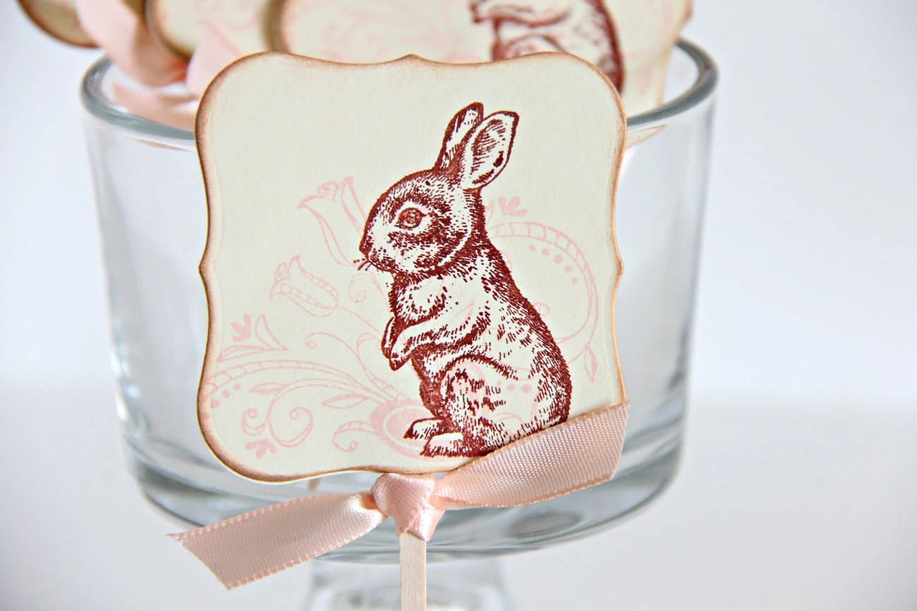 Easter Cupcake Toppers, Baby Shower Cupcake Toppers, Cupcake Toppers, Sandwich Picks, Bunny, Peter Cotton Tail, Set of 12