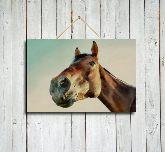 Horse stare down -10x15 Print - Brown wall decor - Western wall decor - Horse wall decor - Brown horse.