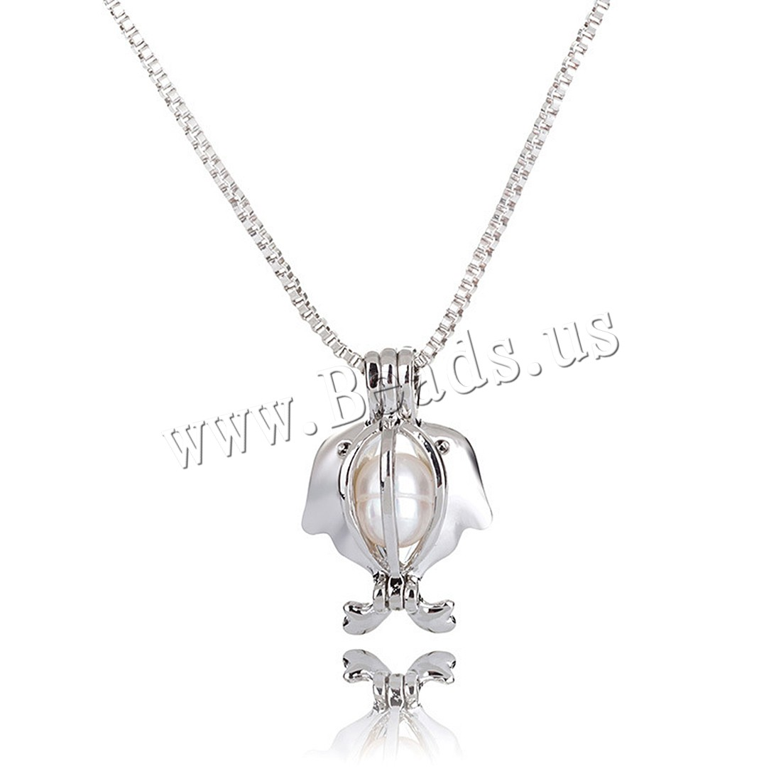 Oyster Wish Pearl Kit Zinc Alloy With Freshwater Pearl