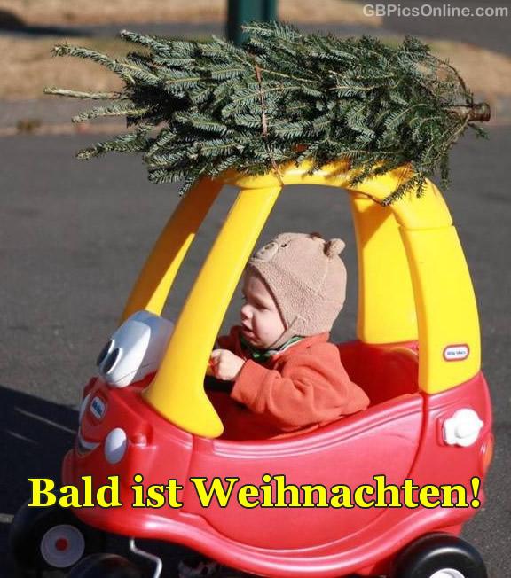 Bald Ist Weihnachten Bilder Bald Ist Weihnachten GB Pics