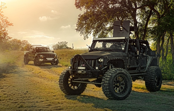 Wallpaper Ford Nature Cars Front Wrangler Jeep Off