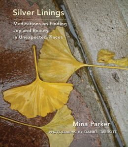 book cover for Silver Linings