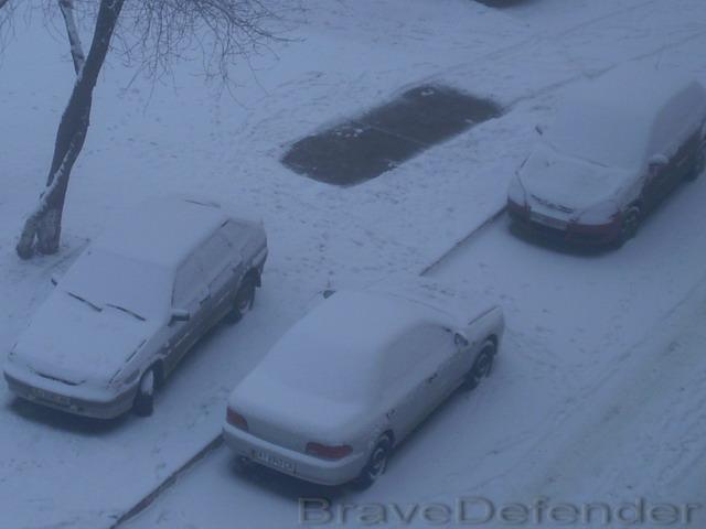 Красуня зима