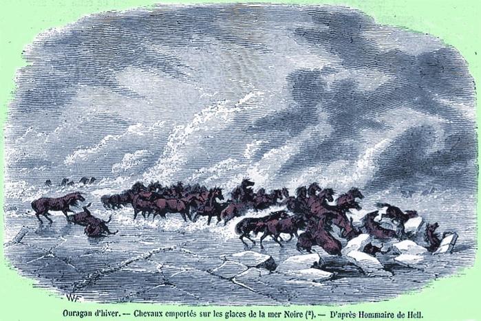 Лошади бегут от вьюги по льду Чёрного моря (700x467, 420Kb)
