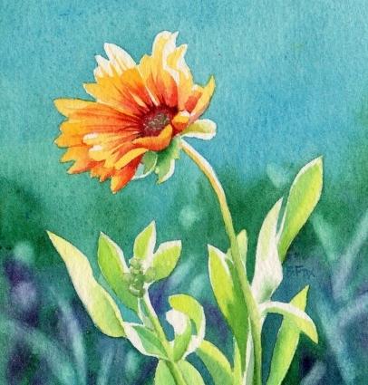 blanket_flower_1_a91fc737552e21b61f804fd53859c27d (406x425, 153Kb)