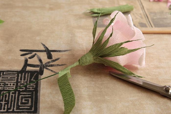 розы из гофрированной бумаги. мастер-класс (26) (699x466, 90Kb)
