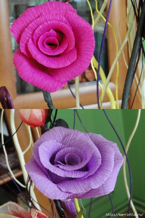 розы из гофрированной бумаги. мастер-класс (39) (466x699, 259Kb)