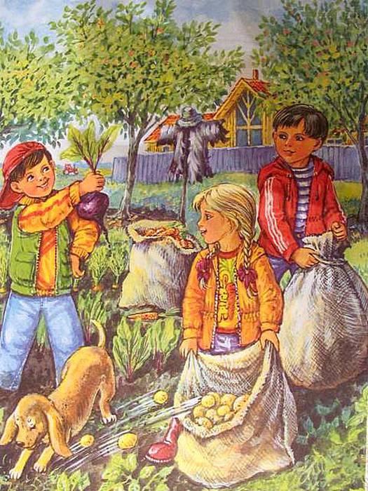 Картинки Сбор Урожая Осенью Для Детей