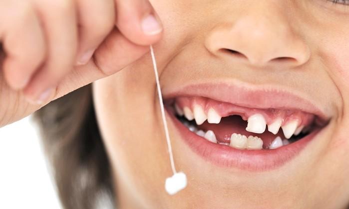 Что такое человеческие зубы? Рыбья чешуя!