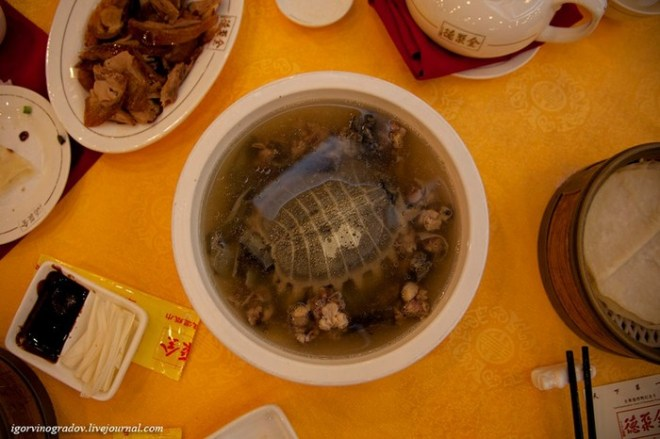 Китайский суп из черепахи