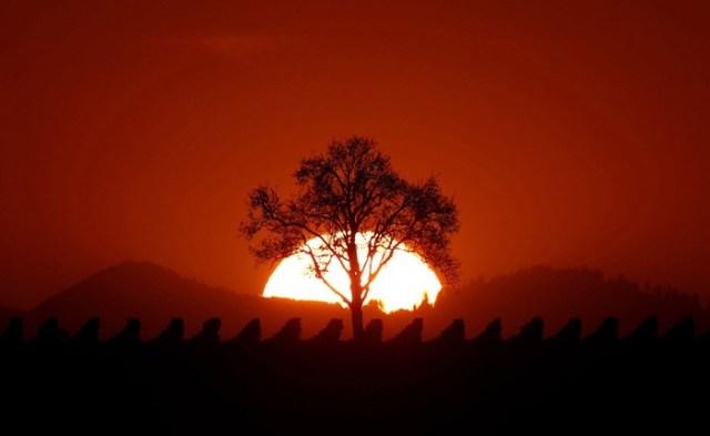 Очарование уходящей осени
