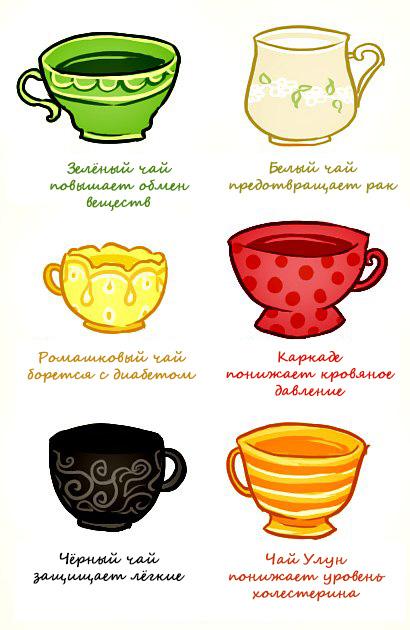 Полезные свойства разных видов чая. Цвета здоровья!