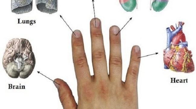 Японцы снимают любую боль за 5 минут, надавливая на нужный палец!