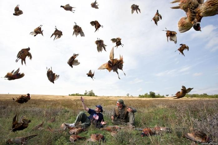 Интересные факты об охоте на зверей и птиц
