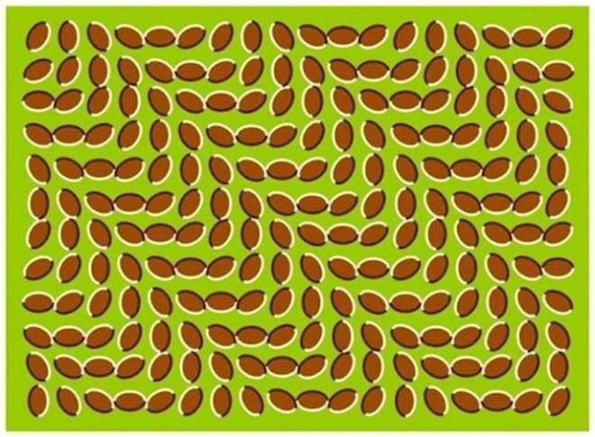 20 оптических иллюзий, которые ломают мозг напрочь