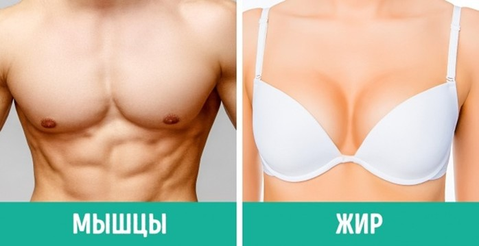 26 особенностях женского тела, о которых многие девушки даже не догадываются!