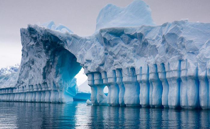 Рекорды Антарктиды— самого самого континента на планете