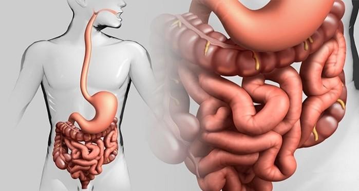 Очищение кишечника с помощью клизм