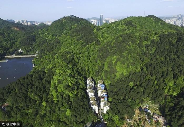 Китайский жилой район посреди леса
