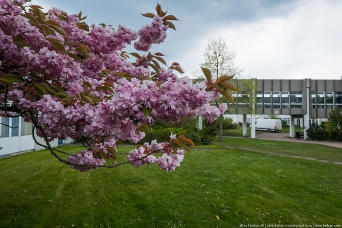 Как лечат в немецкой больнице крупной сети здравоохранения