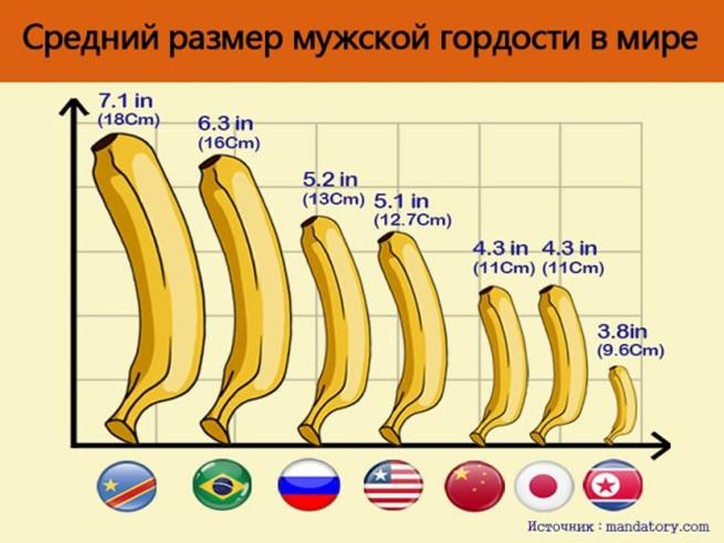 Размер пениса: какое значение он имеет на самом деле