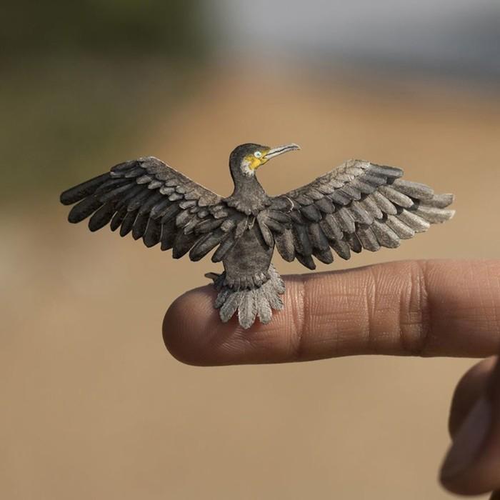 Каждый день индийские художники вырезают по одной птице