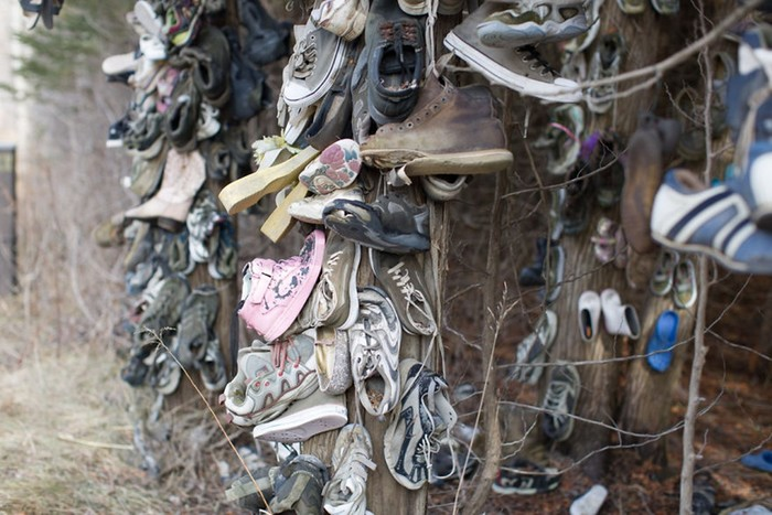 Канадский фотограф обнаружил загадочный «обувной лес» в окрестностях Оринджевилла