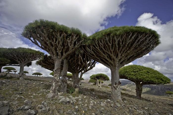 Невероятная красота природы: 10 отдаленных мест Земли