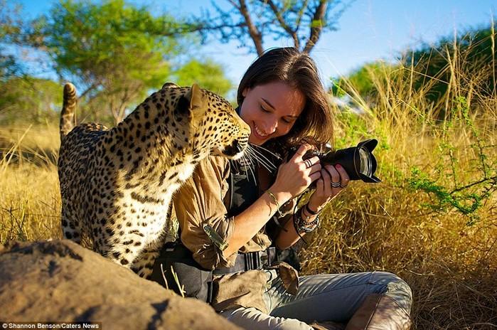 Фотограф Шеннон Бенсо и ее дикие друзья