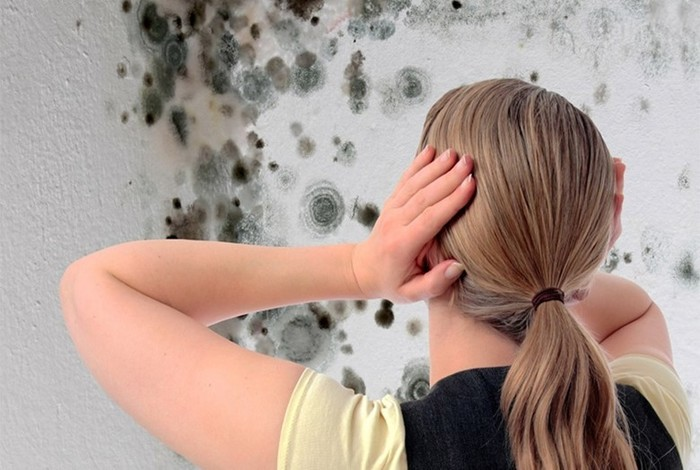 Признаки плесени, незаметно уничтожающей ваш дом: невидимая угроза