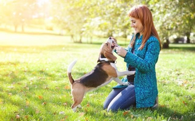 Внимание! 7 простых способов мгновенно поднять себе настроение