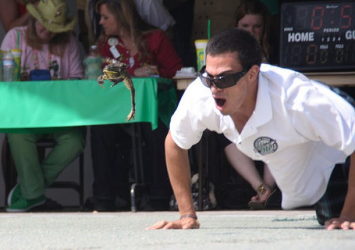 Веселые соревнования прыгающих лягушек в Калифорнии