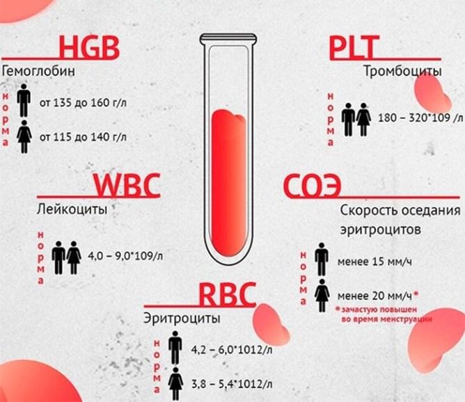 Как самому расшифровать анализ крови и мочи в домашних условиях: бесплатные сервисы