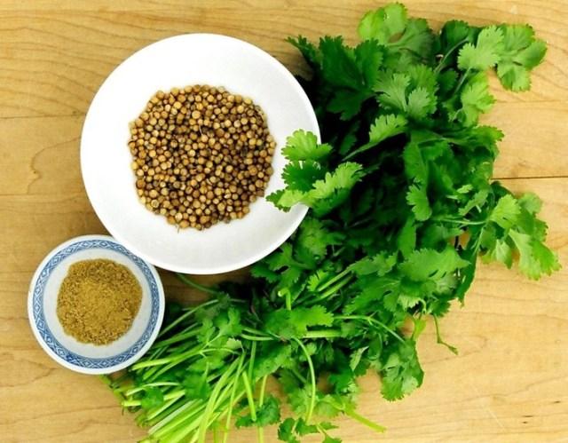 Волшебный кориандр: удивительные свойства полезной травки