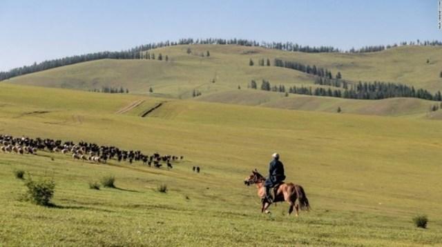 Как живут потомки кочевников монголов сегодня? Фотографии