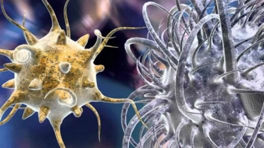 Потрясающая информация о лимфе: то, что не учитывает медицина!