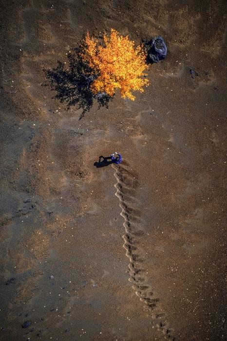 Невероятные фото конкурса любителей аэрофотосъемки